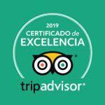 Certificado-de-Excelencia-cuadrado-free-tour-madrid