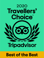 Free Tour Bilbao -Travellers Choice de Trip Advisor 2